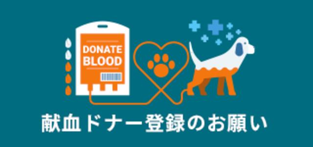 献血ドナー登録のお願い