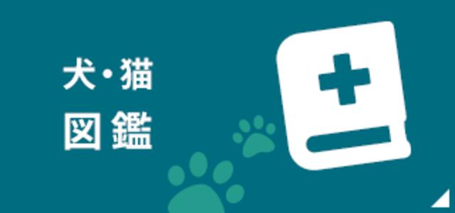 犬・猫 図鑑